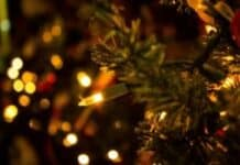 holiday loss prevention tips
