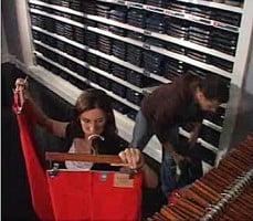 organized theft