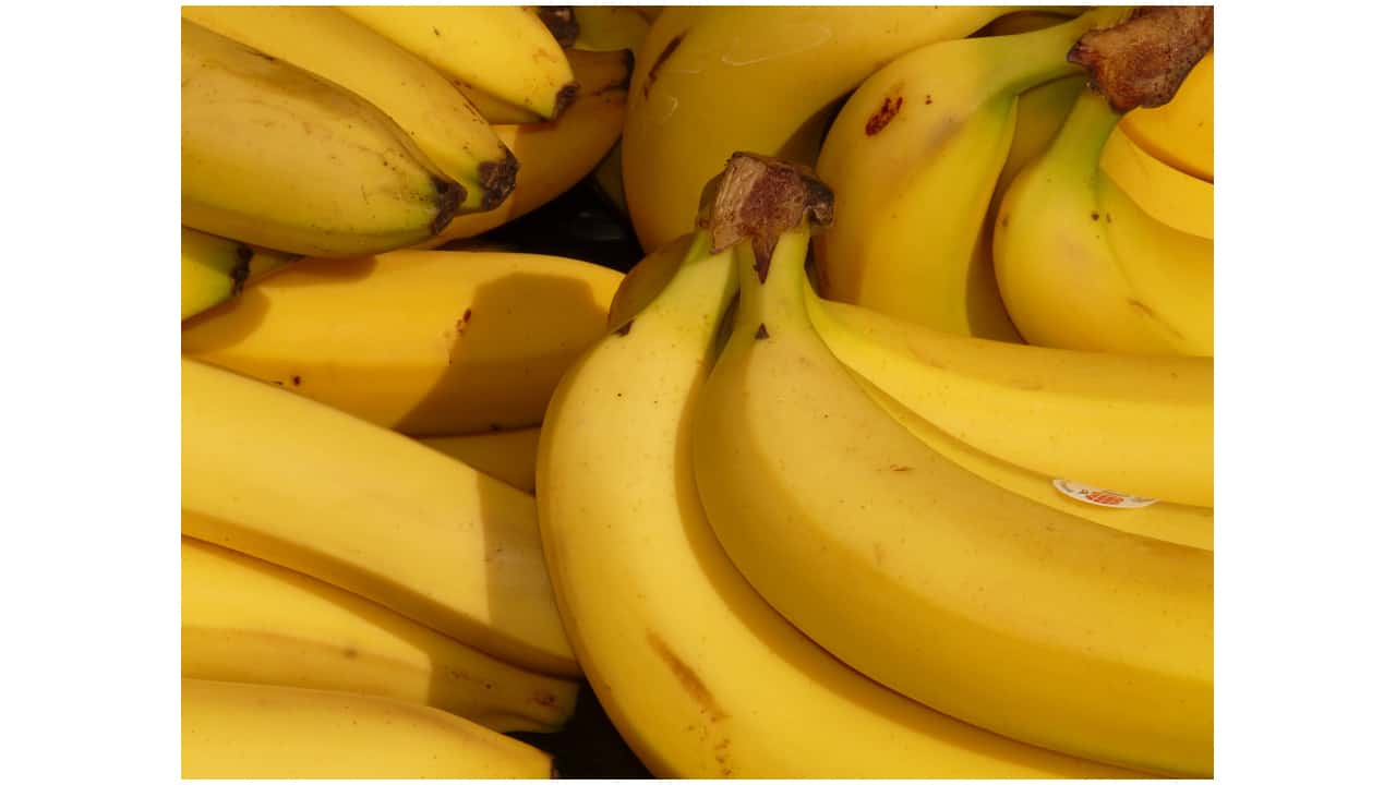 The Banana Trick and Other Acts of Self-Checkout Thievery